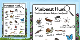 Minibeast Hunt Sheet Checklist