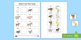 Mothers and their Young Farm Animals Matching Activity