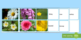 * NEW * Flowers Photo Matching Cards