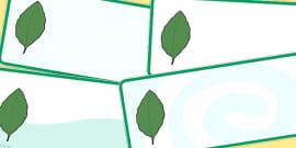 Editable Beech Leaf Drawer Peg Name Labels