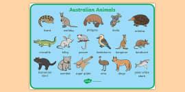 Australian Animals Word Mat - Australia