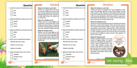 * NEW * KS1 Chickens Differentiated Reading Comprehension Activity
