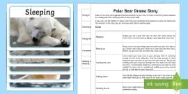 Polar Bear Drama Story