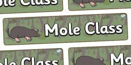 Mole Themed Classroom Display Banner