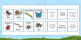 Minibeast Description Cards Matching Activity