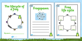 Frog Life Cycle Workbook (Minibeasts)
