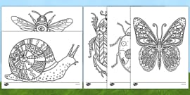 Minibeast Themed Mindfulness Colouring Sheets
