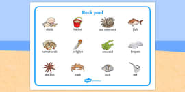 Seaside Rock Pool Word Mat
