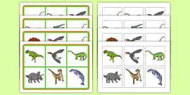 Realistic Dinosaurs SEN Matching Mat