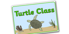 Turtle Class Display Posters