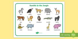 Word Mat (Images) to Support Teaching on Rumble in the Jungle