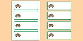 Editable Hedgehog Drawer Peg Name Labels