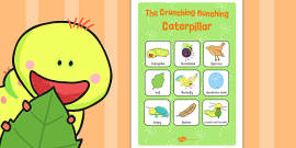 Vocabulary Poster to Support Teaching on The Crunching Munching Caterpillar