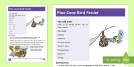 KS1 Make a Pine Cone Bird Feeder Craft Instructions