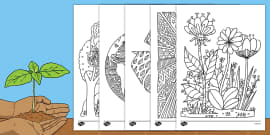 Earth Day Mindfulness Colouring Sheets