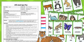 Jungle What's in the Box EYFS Adult Input Plan and Resource Pack