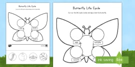 Butterfly Life Cycle Cut and Paste Activity Sheet
