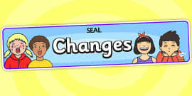 Changes Display Banner (SEAL)