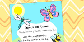 Insects All Around Display Poster