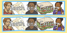 Teeth And Eating Display Banner