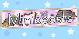 Australia - Minibeasts Cute Display Banner