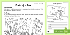 * NEW * Parts of a Tree Activity Sheet