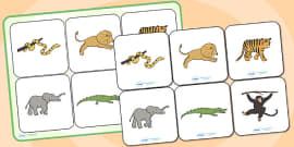 Jungle Animal Themed Matching Cards and Board