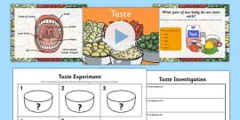 Science Senses 5 Tastes PowerPoint and Worksheets Teaching Pack