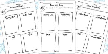 Polar Regions Read and Draw Activity Sheet - polar, read, draw, sheet