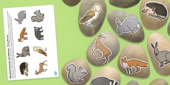 Woodland Animals and Habitats Story Stone Image Cut Outs - woodland, animals, habitats, story stone