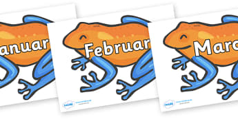 Months of the Year on Tree Frogs - Months of the Year, Months poster, Months display, display, poster, frieze, Months, month, January, February, March, April, May, June, July, August, September