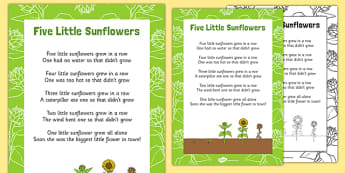 Five Little Sunflowers Counting Song Sheet - counting, song