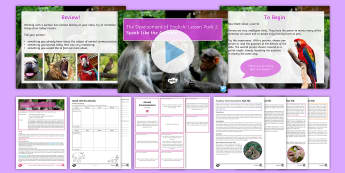 Development of English 2: Animal Communications Lesson Pack - development of English, English language, language development, animal communication, animals, anima