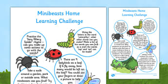 EYFS Minibeasts Home Learning Challenge Sheet Reception FS2 - EYFS, homework, Early years, insects
