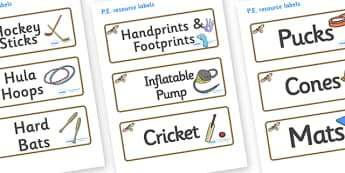 Buzzard Themed Editable PE Resource Labels - Themed PE label, PE equipment, PE, physical education, PE cupboard, PE, physical development, quoits, cones, bats, balls, Resource Label, Editable Labels, KS1 Labels, Foundation Labels, Foundation Stage La
