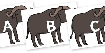 A-Z Alphabet on Buffalos - A-Z, A4, display, Alphabet frieze, Display letters, Letter posters, A-Z letters, Alphabet flashcards