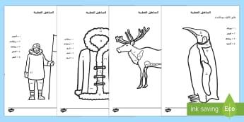 ورقة عمل المناطق القطبية لمطابقة اللون مع العدد - المناطق القطبية، تلوين، التلوين، عربي، أوراق عمل، شيت