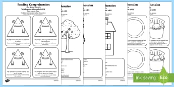 Reading Comprehension Six Key Words Activity Sheet Pack English/Romanian Translation