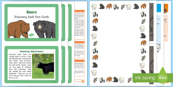 Bears Discovery Pack - EYFS, Early Years, KS1, Understanding the World, Science, living things, exploration, discovery, finding out, facts, information, animals, panda, polar bear, brown bear.