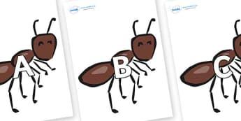 A-Z Alphabet on Ants - A-Z, A4, display, Alphabet frieze, Display letters, Letter posters, A-Z letters, Alphabet flashcards