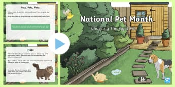KS2 National Pet Month:   Choosing The Right Pet PowerPoint - KS2 National Pet Month (April 2017), PSHE, animals-ks2-topics, ks2-topics-organised-events-and-aware