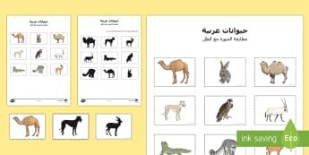 بطاقات مطابقة الحيوان مع الصورة الظلية  - حيوانات عربية، الحيوانات، الحيوانات العربية،صورة وظل