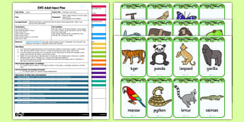 Jungle Describe It and Find It EYFS Adult Input Plan and Resource Pack - plans