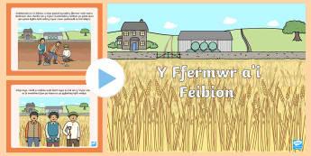 Pŵerbwynt Stori Y Ffermwr a'i Feibion - Welsh, Y Ffermwr a'i Feibion.
