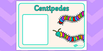 Centipedes Group Signs - centipedes, group signs, minibeasts