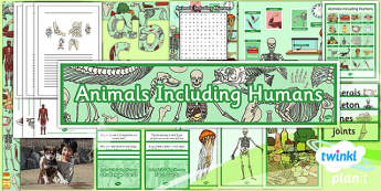 PlanIt - Science Year 3 - Animals Including Humans Unit Additional Resources