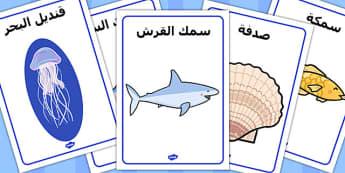 ملصقات عرض عن تحت البحر عربي
