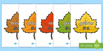 Colour Words on Autumn Leaves Poster English/Mandarin Chinese - Colour Words on Autumn Leaves - Leaves, colour display, colour posters, colour, display, poster, pos