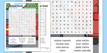 Irish Gaeilge Ar an Sráid Word Search - irish, gaeilge, word search, pack, shopping, town, transport, siopadóireacht