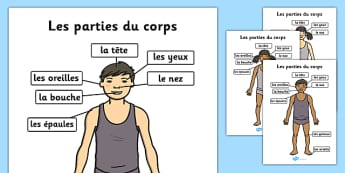 Parties Du Corps Head and Shoulders A4 French - french, parts, body, head, shoulders